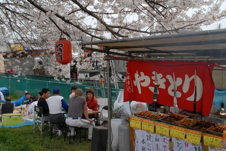 2007 桜2